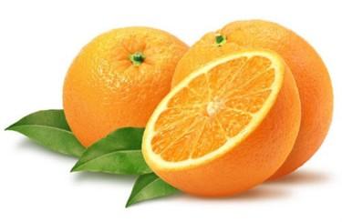 Seville Oranges are back!