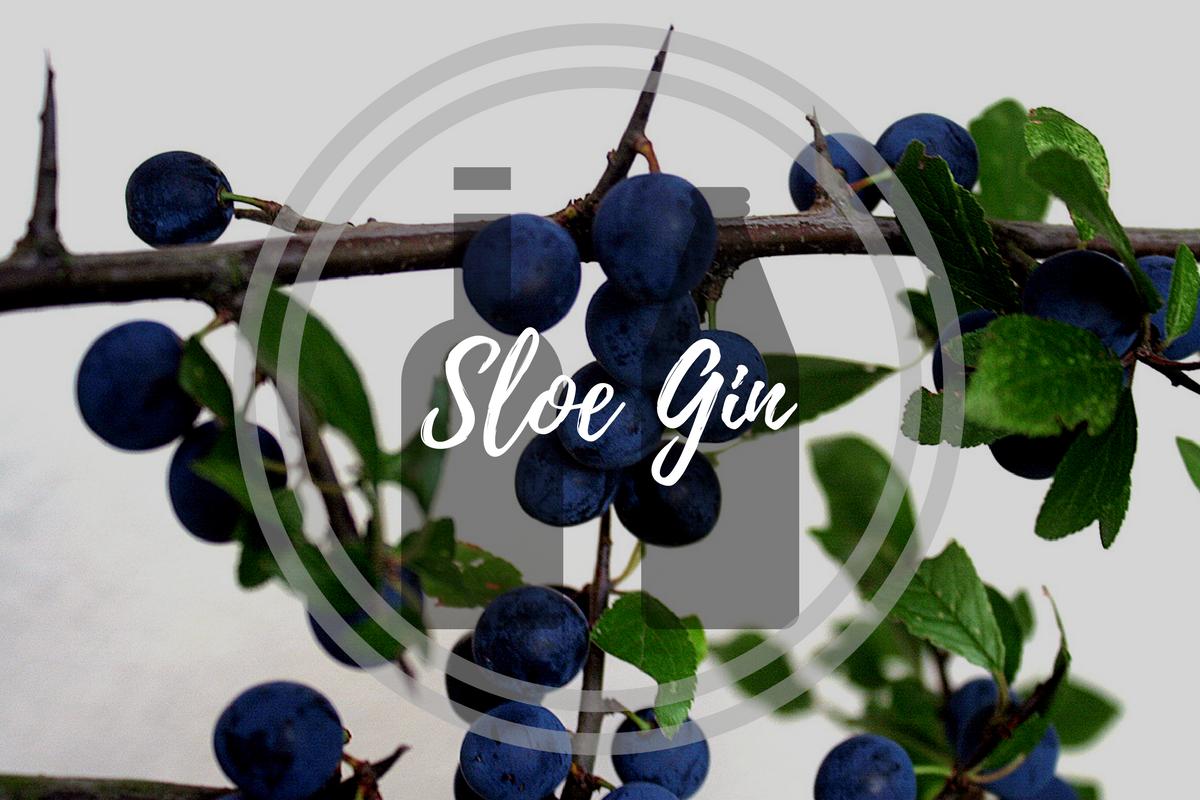 Delicious Sloe Gin Recipe