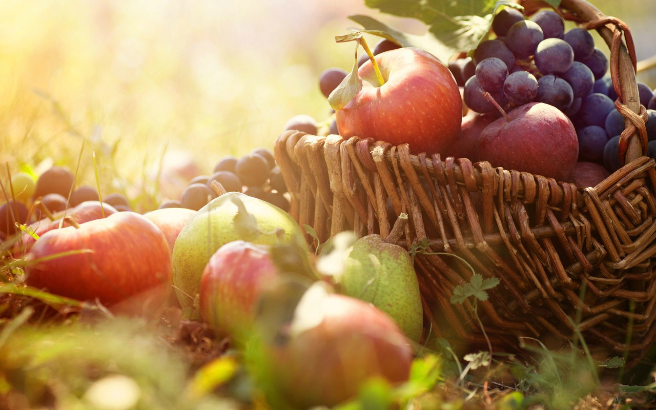 This month's crops to sow and harvest (September).